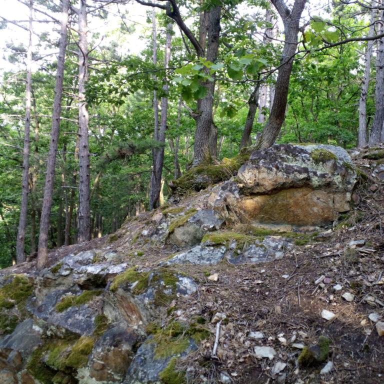 Folge 9 – Der Felsenberg